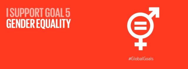 SDG5 banner